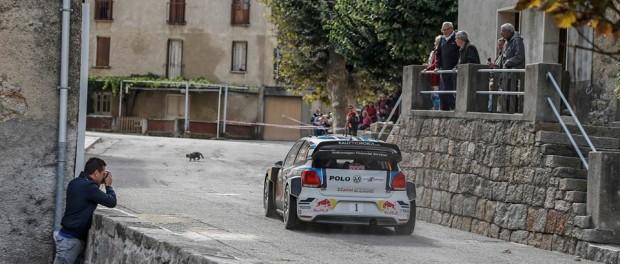 Tour de corse 2015 Volkswagen Polo R WRC