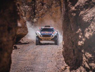 Dakar 2019 Etape 7 : Peter rit