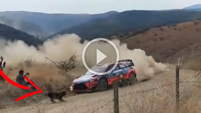 Thierry Neuville vs chien - Rallye Mexique 2020